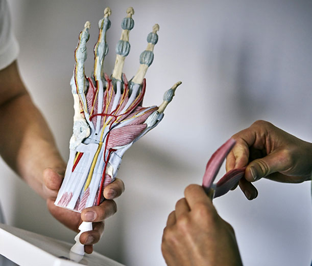 Dünne handgelenke mann sehr dünne handgelenke